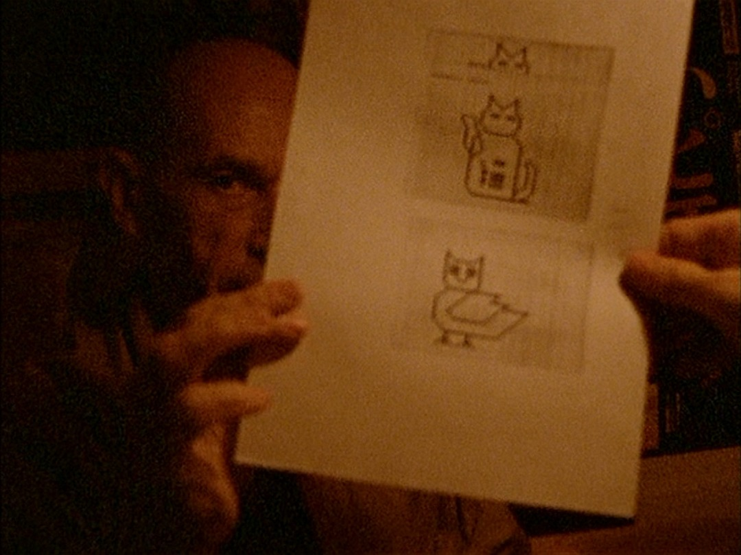 Image result for an owl is an owl is an owl chris marker